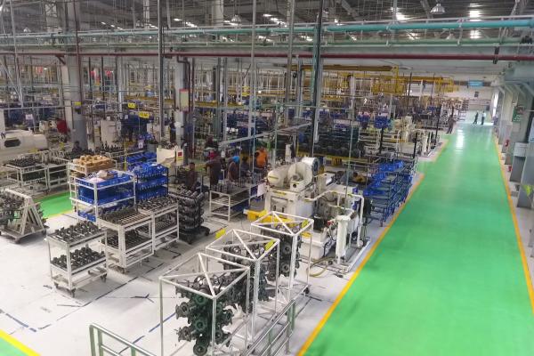 new-plant-1087150F38-A642-C27E-3570-E970FBE88840.png